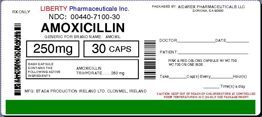 amoxicilline disp 500 pch