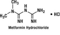 Ivermectin for dogs cat
